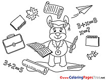 Rabbit Colouring Sheet Supplies  download Graduation