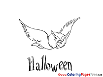 Owl free Colouring Page Halloween