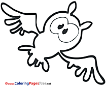 Owl Halloween Colouring Sheet free
