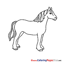 Animal Horse for Kids printable Colouring Page