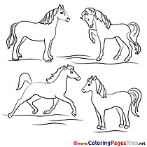 Coloring Sheets Horses download free