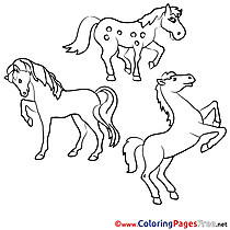 For free Horses Coloring Pages download