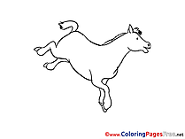 Image Horse Coloring Sheets download free