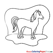 Meadow Horse Coloring Pages for free