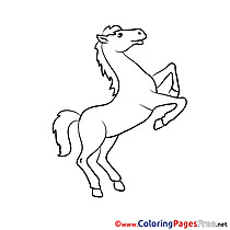 Stallion Coloring Sheets download free