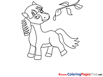 Twig Pony Colouring Sheet download free