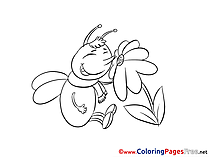 Bee Flower printable Coloring Sheets download