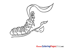 Caterpillar with Leaf Kids download Coloring Pages