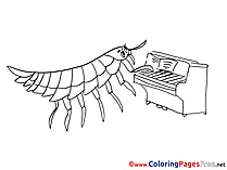Centipede for Children free Coloring Pages