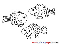 Colouring Sheet download free Fishes