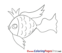 Golden Fish free Colouring Page download