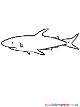 Shark Children Coloring Pages free