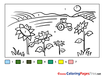 Field Sunflowers Kids Painting by Number Coloring Page