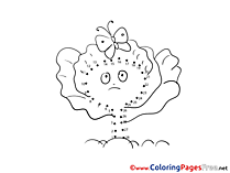 Flower Butterfly free Colouring Page Painting by Number