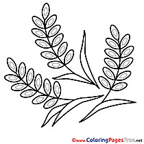 Kids Confirmation Coloring Pages