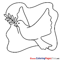 Pigeon Confirmation Coloring Pages download