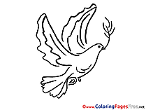Coloring Sheets Pigeon Pentecost free