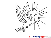 Download Pentecost Sun Coloring Pages