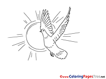 Free Colouring Page Sun Pigeon Pentecost