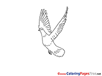 Kids Pentecost Coloring Pages