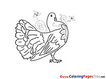 Kids Pentecost Pigeon Coloring Page