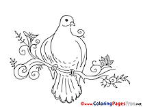 Olive Coloring Sheets Pentecost free