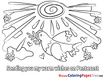 Pigeon Colouring Page Pentecost free