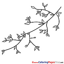 Branch download Spring Coloring Pages