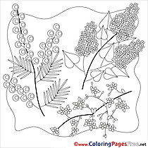 Children Spring Colouring Page Flowers