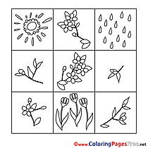 Coloring Sheets Spring free Flowers