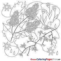 Ffor Kids Spring Flowers Colouring Page