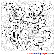 Flowers Coloring Pages Spring