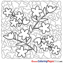 Flowers free Colouring Page Spring
