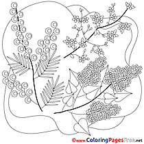 Flowers Kids Spring Coloring Pages