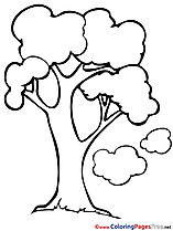 Free Tree Colouring Sheet download Spring