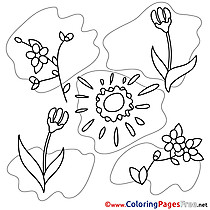 Illustration Spring Coloring Pages download Sun