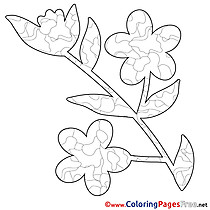 Image Flower printable Spring Coloring Sheets
