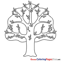 Printable Tree Coloring Pages Spring