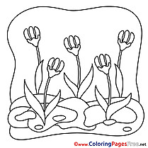 Spring free Flowers Coloring Pages