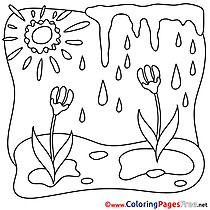 Sun Spring free Coloring Pages Rain