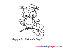 Clover Owl printable St. Patricks Day Coloring Sheets