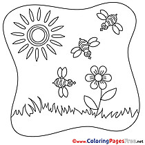 Bees Sun download Summer Coloring Pages