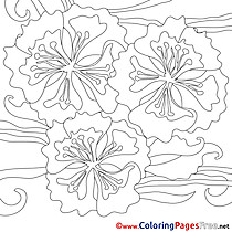 Flowers printable Coloring Pages Summer