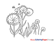 Flowers Summer free Coloring Pages