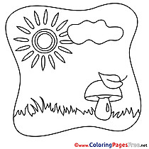Mushroom Coloring Sheets Grass Summer free