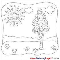 Nature Summer Coloring Pages Tree download