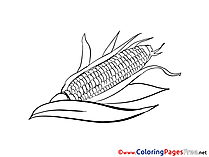 Corn Coloring Sheets download free