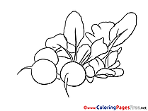 Radish Children Coloring Pages free