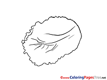 Salad Coloring Sheets download free