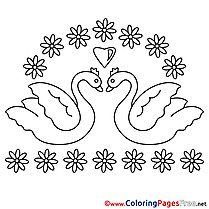 Swans Flowers Wedding Colouring Sheet download free